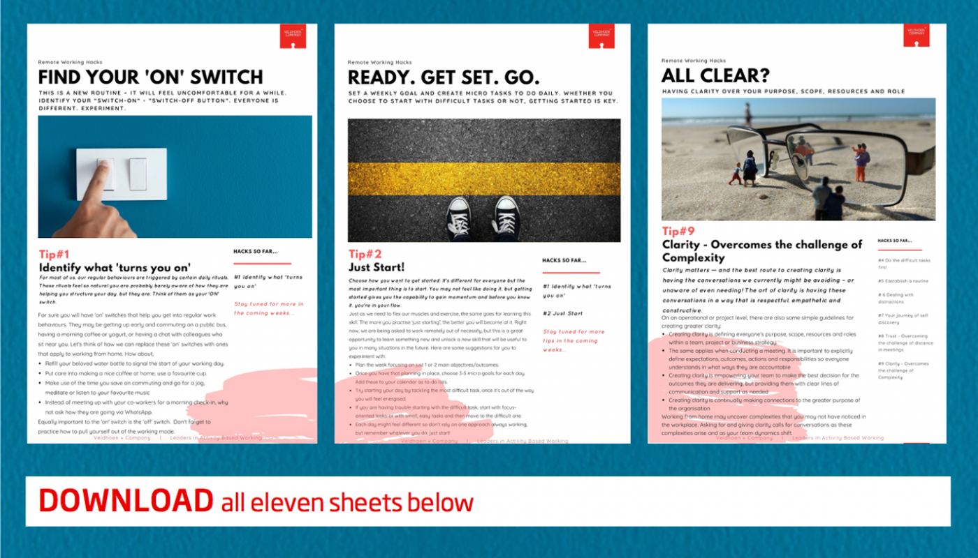 download-all-sheets